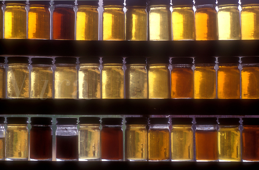 maple syrup, Montpelier, VT, Vermont, Samples of different grades of maple syrup in the window of Morse Farm at sugaring time in Montpelier.