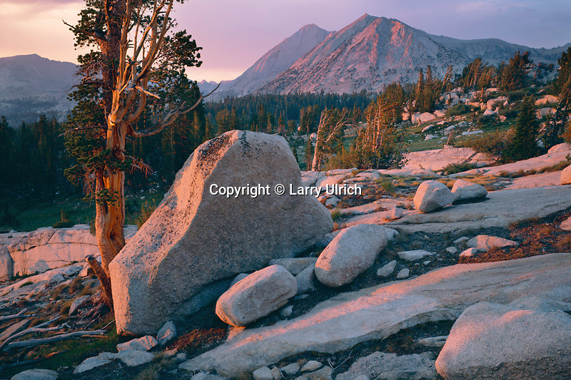 Mt. Conness and North Peak<br />   from Young Lakes Basin<br /> Yosemite National Park<br /> Sierra Nevada,  California