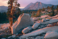 Mt. Conness and North Peak<br />