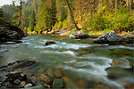 Idaho, North, St. Joe National Forest. The Little North Fork of the St. Joe River in late summer.