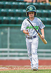 8 July 2014: Vermont Lake Monsters batboy, and son of Manager David Newhan, Nico Newhan helps the team during a game against the Lowell Spinners at Centennial Field in Burlington, Vermont. The Lake Monsters rallied with two runs in the 9th to defeat the Spinners 5-4 in NY Penn League action. Mandatory Credit: Ed Wolfstein Photo *** RAW Image File Available ****