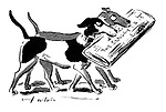 (It takes two dogs to carry The Sunday Times)