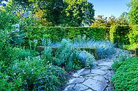 France, Loir-et-Cher (41), Cellettes, Château de Beauregard et le parc, Jardin des Portraits imaginé par Gilles Clément, jardin bleu avec céanothe, immortelle d'Italie, élyme des sables (Leymus arenarius)