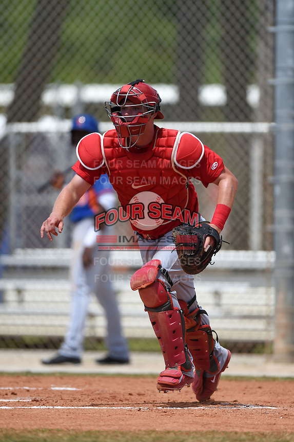 St. Louis Cardinals catcher Carson Kelly (29) during a minor league spring training game against the New York Mets on April 1, 2015 at the Roger Dean Complex in Jupiter, Florida.  (Mike Janes/Four Seam Images)