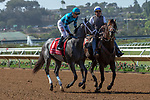DEL MAR, CA  SEPTEMBER 1: #1 Boujie Girl, ridden by Geovanni Franco, in the post parade of the Del Mar Debutante (Grade 1) on September 1, 2018, at Del Mar Thoroughbred Club in Del Mar, CA.(Photo by Casey Phillips/Eclipse Sportswire/Getty ImagesGetty Images