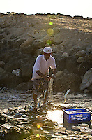 local fishermen claning the nets and throwing the fish into a blue plastic box. oman, arabia