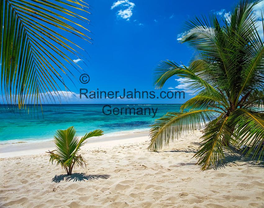 Dominikanische Republik, Isla Saona, Laguna Canto de la Playa, leerer Strand | Dominican Republic, Saona Island, Laguna Canto de la Playa, empty, deserted beach
