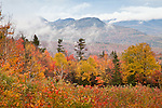 Fall foliage on the Osceola Range in the White Mountain National Forest, NH, USA