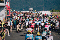 peloton rolling in the crowded finish zone<br /> <br /> Stage 14: Saint-Paul-Trois-Ch&acirc;teaux &gt; Mende (187km)<br /> <br /> 105th Tour de France 2018<br /> &copy;kramon