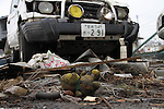(March 31st, 2011)  Almost three weeks after the tsunami the city of Sendai, with a population of over a million, struggles with the after effects.  Especially hard hit was the low-lying port area of Tagajo.  Stuffed animals and cars stand out from the dark mud that covers everything..