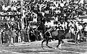 Iraq 1979  In Suleimania at a school fete , girls can take part in a horse race for the first time   Irak 1979 Fete de l'ecole a Suleimania, les filles peuvent pour la premiere fois participer a une course de chevaux