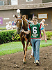 Bet the Power before The Stonewall Farm Ocala-Hockessin Stakes  at Delaware Park on 7/28/12