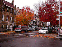 Brooklyn street close to Prospects park. Images of New York 2004, New York,U.S.A