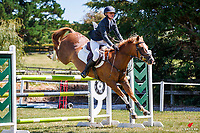 NZL-Aimee Collinson rides Moonlight Glow. Final-2nd. Class 24 Country TV Pony Premier Grand Prix. 2020 NZL-Collinson Forex Premier Show Jumping At Woodhill Sands. Helensville. Sunday 12 January. Copyright Photo: Libby Law Photography