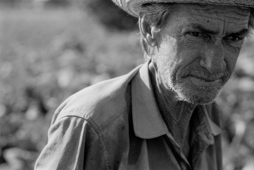 A Cuban charcoal and tobacco farmer works in the Valle de Vi˜ãles in Pinar del Rio, Cuba.