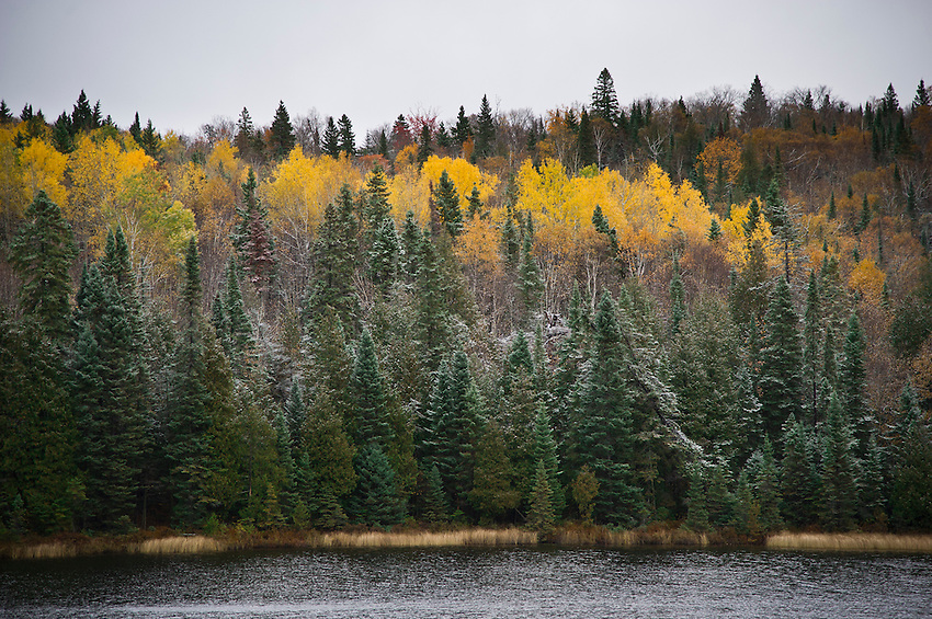 Fall color and light snow in the Algoma Highlands region of northern Ontario at Lake Superior Provincial Park.