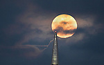 The full moon rose over the Transamerican Pyramid as seen from Masonic Ave in San Francisco, CA.