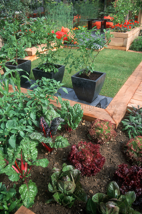 Small space vegetable garden at home | Plant & Flower Stock ...