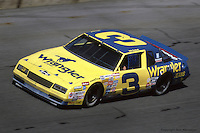 DAYTONA BEACH, FL - FEBRUARY 16: Dale Earnhardt drives his Wrangler Chevrolet during the Daytona 500 on February 16, 1986, at the Daytona International Speedway in Daytona Beach, Florida.