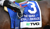 Somali Lemonade (no. 3), ridden by Luis Saez and trained by Michael Matz, wins the the 76th running of the grade 1 Diana Stakes for fillies and mares three years old and upward on July 19, 2014 at Saratoga Race Course in Saratoga Springs, New York.  (Bob Mayberger/Eclipse Sportswire)