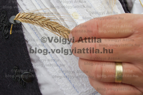 Mayor of the village puts a spica of wheat on his dress during a traditional harvest festival in Opalyi (some 280 kilometers East of capital city Budapest), Hungary on July 13, 2013. ATTILA VOLGYI