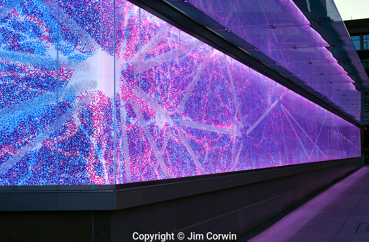 Brain Institude Abstract, LED Lighted Wall
