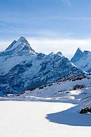 CHE, Schweiz, Kanton Bern, Berner Oberland, Grindelwald - First: der zugefrorene Bachalpsee in 2.265 m Hoehe vor der grandiosen Bergkulisse mit Schreckhorn 4.078 m und Finsteraarhorn 4.274 m - von links nach rechts | CHE, Switzerland, Bern Canton, Bernese Oberland, Grindelwald - First: Lake Bachalpsee at 2.265 m altitude with Schreckhorn 13.380 ft. and Finsteraarhorn mountain 4.274 m