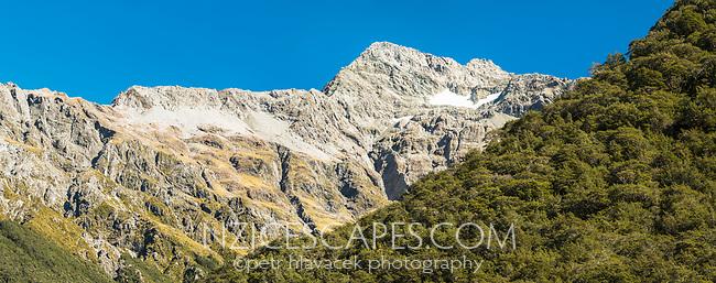 Mount Rolleston and beech forest, Arthur's Pass National Park, Canterbury, New Zealand, NZ
