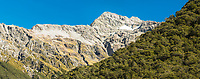 Mount Rolleston and beech forest, Arthur's Pass National Park, Canterbury, New Zealand, NZ