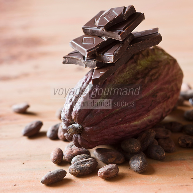 Europe/France/Ile-de-France/75006/Paris: Chocolat chez Christian Constant Chocolatier Confiseur- Chocolat et Cabosses , fruit  du cacaoyer - Stylisme : Valérie LHOMME