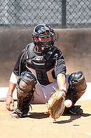 April 1, 2010:  Catcher Yan Gomes of the Toronto Blue Jays organization during Spring Training at the Carpenter Complex in Clearwater, FL.  Photo By Mike Janes/Four Seam Images