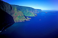 Aerial view of the north face of Molokai, showing the openings of several valleys along the coastline and the Kalaupapa peninsula in the background