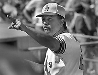 Oakland Athletics manager Dick Williams, 1972 (photo/Ron Riesterer)