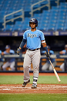 Kevin Melendez (14) at bat during the Tampa Bay Rays Instructional League Intrasquad World Series game on October 3, 2018 at the Tropicana Field in St. Petersburg, Florida.  (Mike Janes/Four Seam Images)