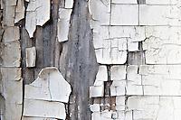 Cracked peeling paint.
