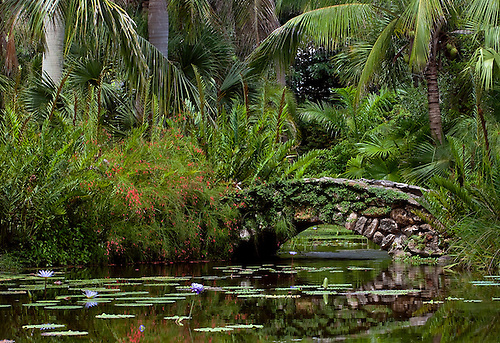 This stone bridge with its reflection in the water is over the pond at McKee Botanical Garden. Located in the subtropical setting of Vero Beach, FL, McKee is an historic garden.