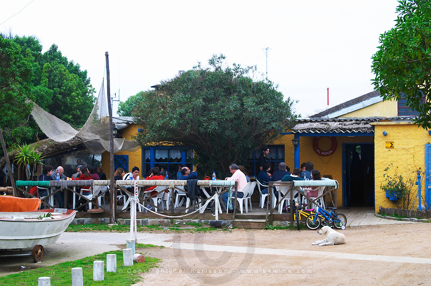 The outside seating terrace at the restaurant, with people sitting eating having lunch in the shade under a tree. at the restaurant La Estacada on the waterside Montevideo, Uruguay, South America