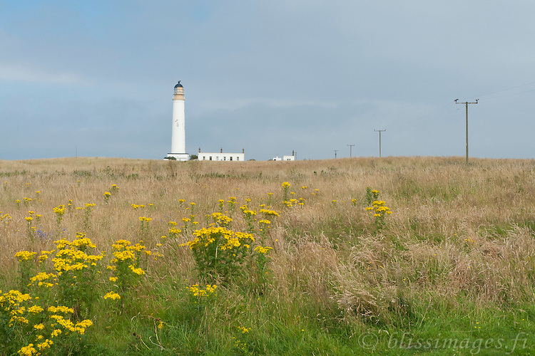 Barns Ness lighthouse overlooks the North Sea in southeast Scotland at East Lothian.