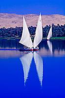 Egypt-Aswan & Nubian village