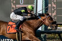 02-17-18 Santa Anita Stakes Races