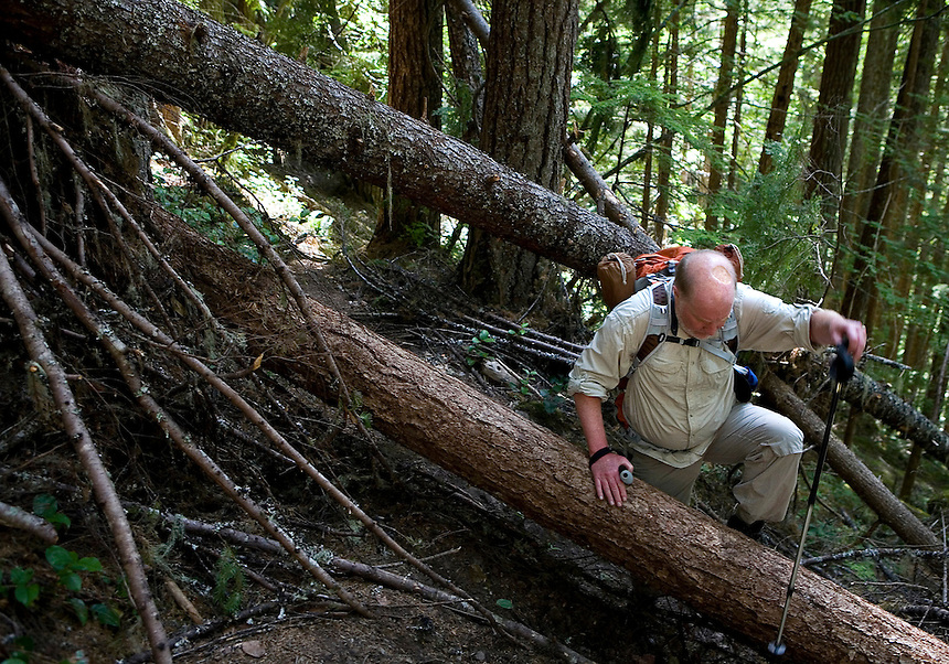 Photo by Stephen Brashear.Sandy McKean of Seattle a member of the Trailblazers, a group of high mountain anlgers, makes his way over deadfall on his way to Monogram Lake in the North Cascades National Park near Marblemount, Wash., Tuesday Aug. 12, 2008.