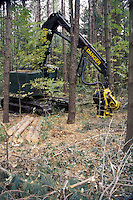 Mechanized Tree Harvesting