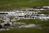The pitch at Bloomfield Road is not holding up to well at the moment<br /> <br /> Photographer Dave Howarth/CameraSport<br /> <br /> The EFL Sky Bet League One - Blackpool v Doncaster Rovers - Tuesday 12th March 2019 - Bloomfield Road - Blackpool<br /> <br /> World Copyright © 2019 CameraSport. All rights reserved. 43 Linden Ave. Countesthorpe. Leicester. England. LE8 5PG - Tel: +44 (0) 116 277 4147 - admin@camerasport.com - www.camerasport.com