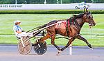 06-20-19 New York Stallion Series Yonkers Raceway