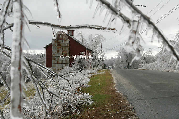 WINSTED, CT - 12 December, 2008 - 121208MO04 - Ice clung to trees at higher elevations in northern Litchfield County Friday, including this spot on South End Road (also known as Eishner Road and South Road) in Winsted. Jim Moore Republican-American.