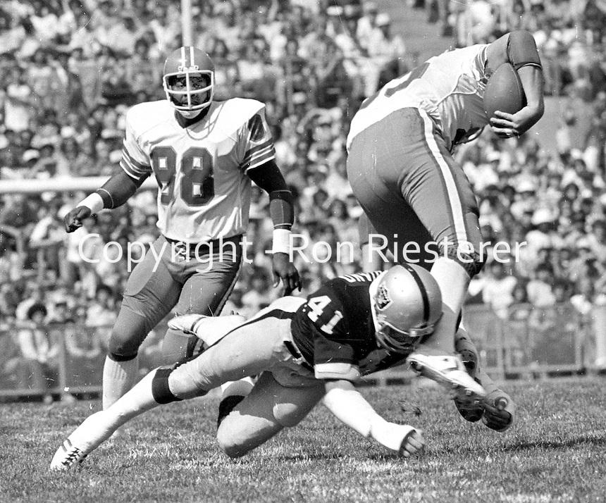 Oakland Raider linebacker Phil Villapiano upends Denver reciever. (1979 photo/Ron Riesterer)