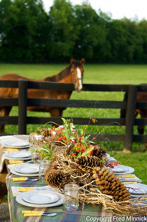 Ashview Farm, owned by Mr. and Mrs. Wayne G. Lyster III, is a 350 acre thoroughbred horse farm located in Versailles, KY. The farm donated its beautiful land for this Junior League cookbook table top setting.