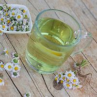 Gänseblümchen-Tee, Gänseblümchentee, Tee aus Gänseblümchen, Gänseblümchen-Blüten, Heiltee, Kräutertee, Blütentee, Ausdauerndes Gänseblümchen, Mehrjähriges Gänseblümchen, Maßliebchen, Tausendschön, Bellis perennis, English Daisy, common daisy, lawn daisy, herb tea, herbal tea, tea, la Pâquerette, la pâquerette vivace