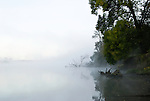 Gilbert river fog, Sauvie Island, Oregon