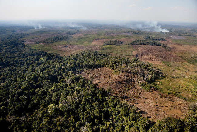 "Overflight over Mayan Biosphere Reserve, Fires and uncontrolled logging is big threat for the Reserve. ""Laguna del Tigre"", the western part of the park the Reserve is about to disappear."